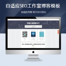 [DG-0196]响应式SEO优化博客帝国cms模板,自适应SEO网站优化工作室博客模板下载