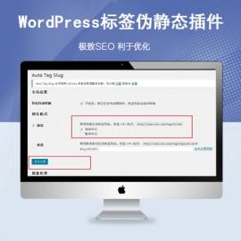 WordPress伪静态插件标签tag中文URL转拼音插件Auto Tag Slug
