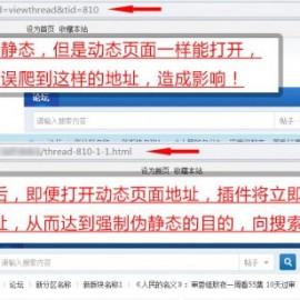 Discuz地址强制伪静态插件seo V5.3 商业版dz插件搜索引擎增强功能