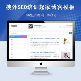 [DG-082]仿搜外SEO培训起家模板,搜外SEO培训博客文章模板