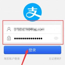 登录支付密码是什么意思(登录密码是什么意思)