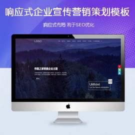 [DG-0165]帝国cms响应式企业宣传推广模板 自适应营销策划帝国cms模板