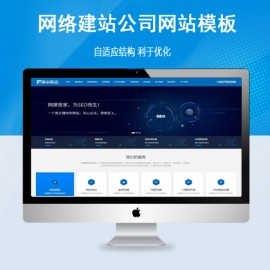 [DG-020]帝国cms网络公司模板建站SEO优化外包公司模板