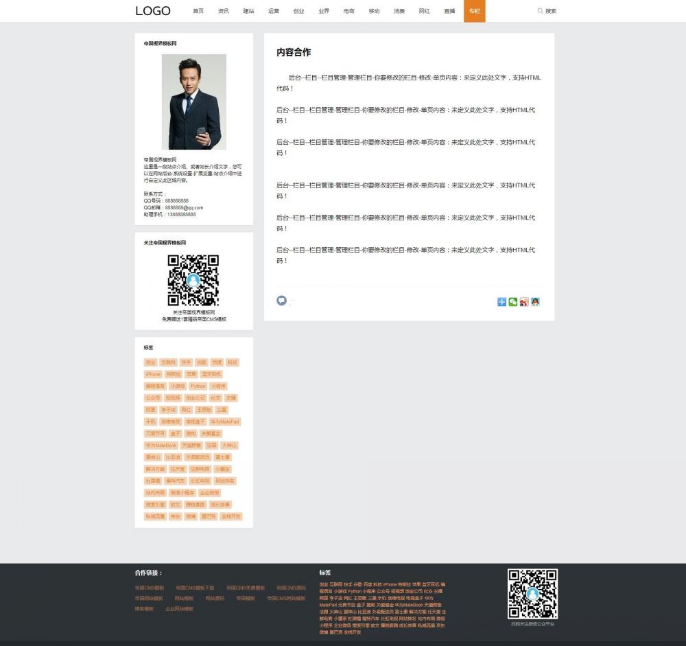 网站单页.jpg [DG-059]帝国CMS模板经典简约个人博客文章资讯模板 博客文章 第4张