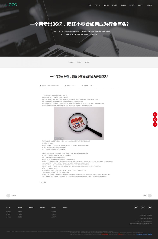 9新闻详情页.png [DG-110]响应式高端网站建设互联网营销类帝国CMS模板 html5建站设计公司网站源码(自适应手机版) 企业模板 第9张